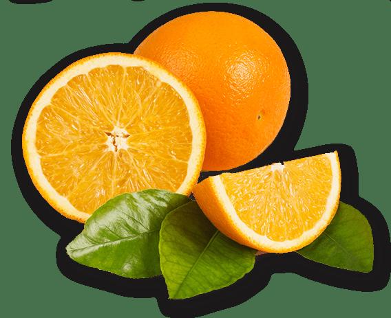 fruta-2
