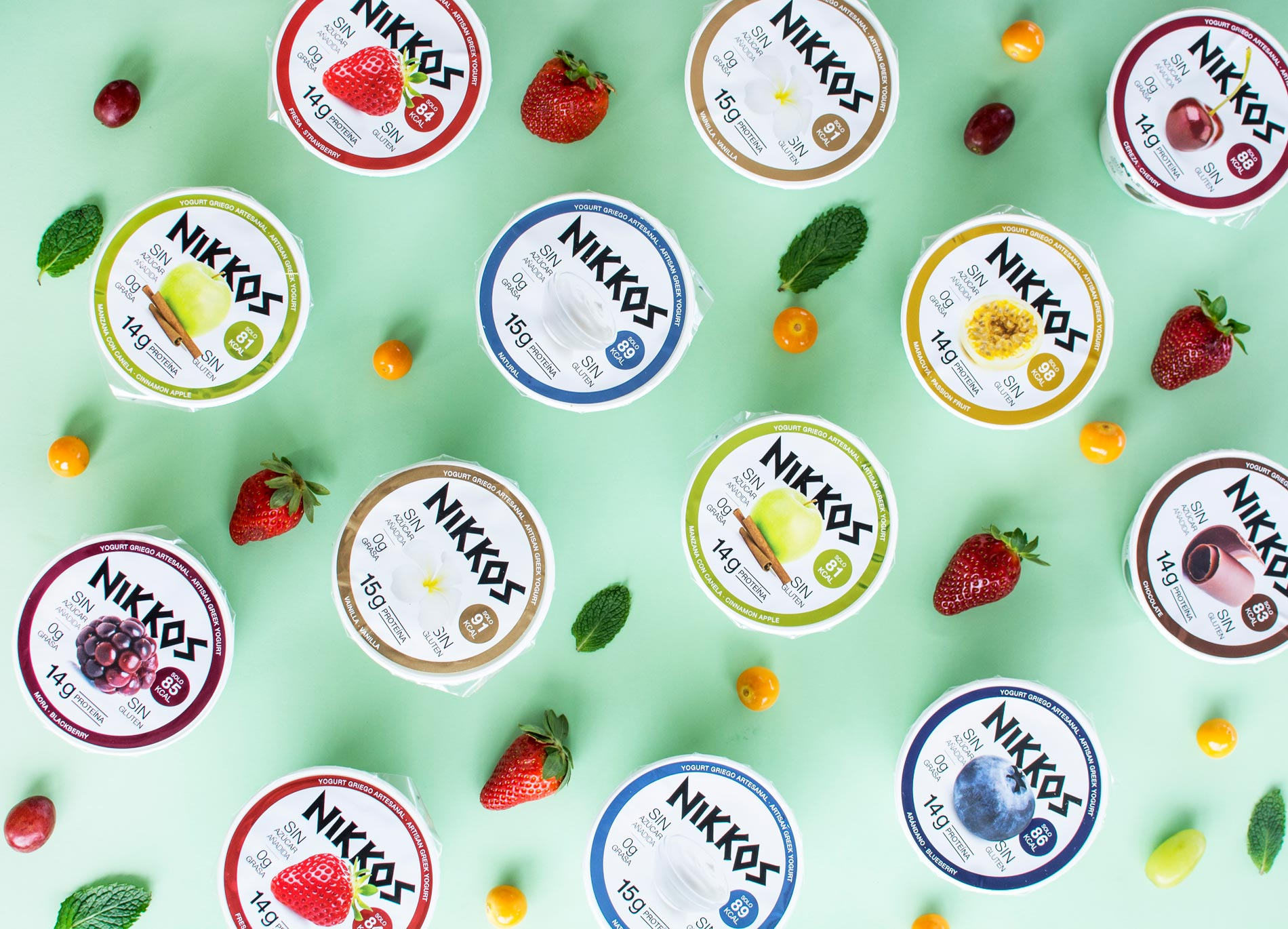 Yogurt Griego Artesanal