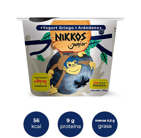 Dummie de producto Junior sabor arándano