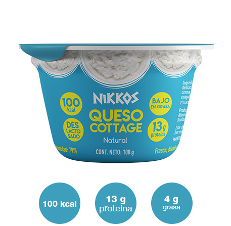 Queso-cottage-natural-100